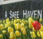 Safe Haven expands to 120 locations