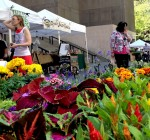 Chicago Farmers Markets prepare to open May 14