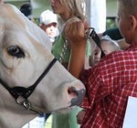 Woodford County 4-H Fair coming to Farm Bureau Park