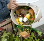 City Council approves ordinance to expand citywide composting program