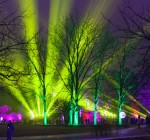 Morton Arboretum's Tree Lights show returns this November