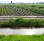 New Clean Water Rule poses regulatory concerns for farmers