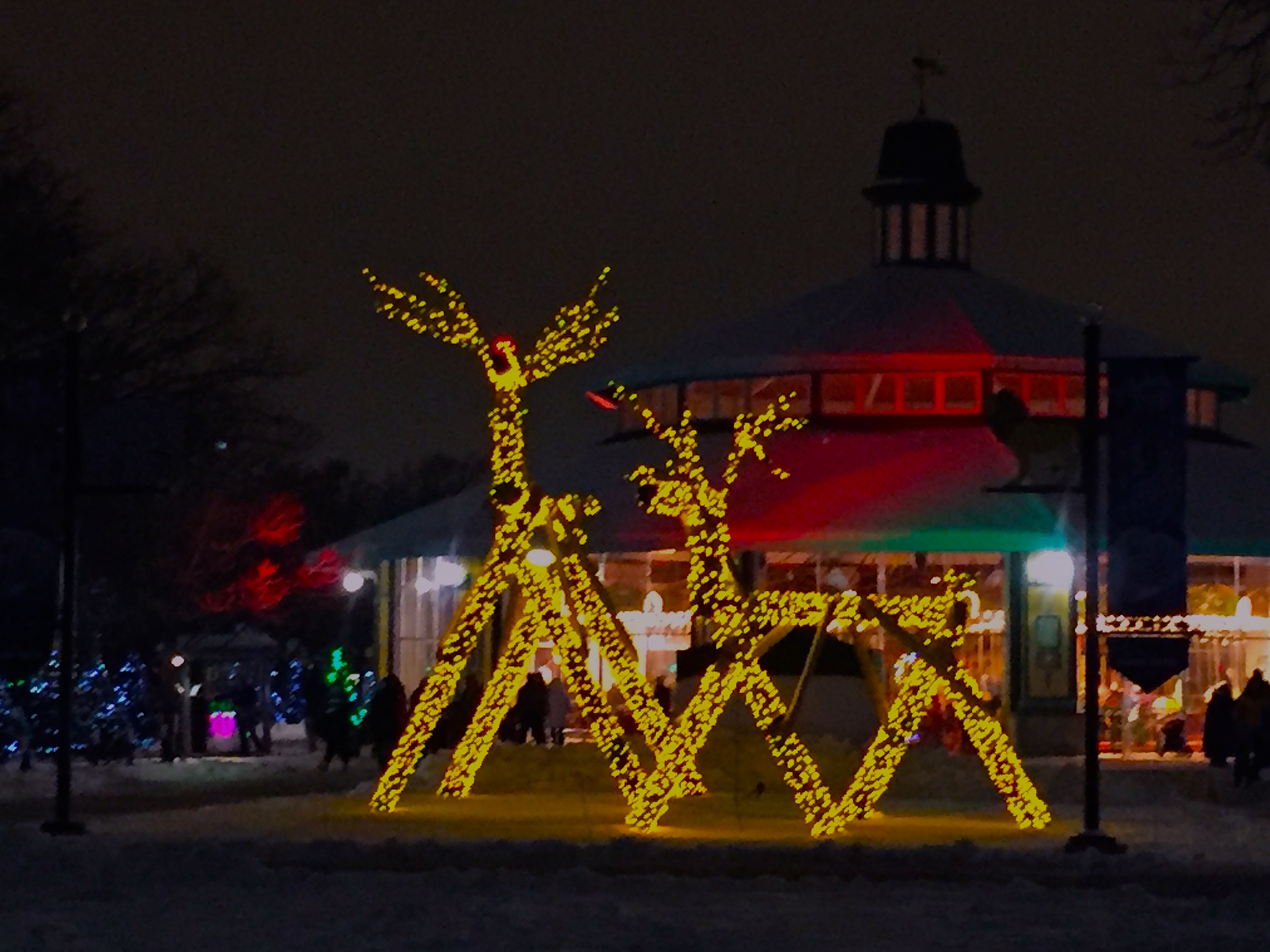 Giant Reindeer Light Up The Grounds At Brookfield Zoo Holiday Magic 2015.  (Photo By
