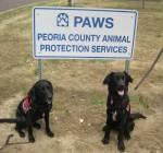 Peoria Area News Briefs