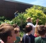Volunteers needed for Woodford master gardener program