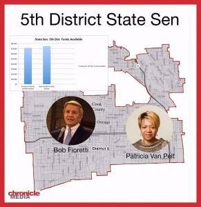 2011 Illinois Senate District 5