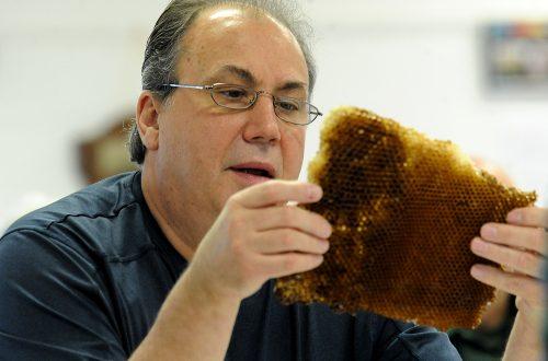 Beekeeping workshop attracts people for varied reasons
