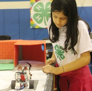 Tila Uriostegui of Simmons Middle School in Aurora checks her team's DogBot course during a practice run April 9. (Photo courtesy University of Illinois Extension)
