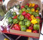 Local farmers markets shop the idea of community
