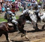 Olde English Faire also serves as Wildlife Prairie Park fundraiser