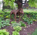 McHenry Co. gardens in full bloom for annual garden walk