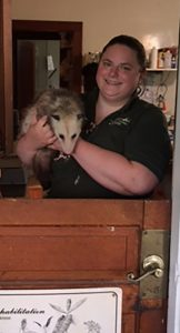 Laura Kirk, director of animal control at the Fox Valley Wildlife Center