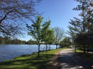 The Rock River Recreation Path is the most utilized recreational path in Rockford. (Photo courtesy of GoRockford.com)