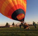 Harvard Balloon Fest has hearts soaring