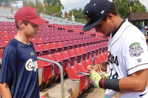 Kane County Cougars lose MLB affiliation in baseball shakeup