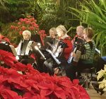 A stroll through Luthy Botanical Gardens offers respite from winter's chill