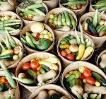 Early orders for summer fruits and veggies is win-win for farm and customers