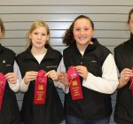 Fox Valley 4-H teams dominate Northeast regional equine contest