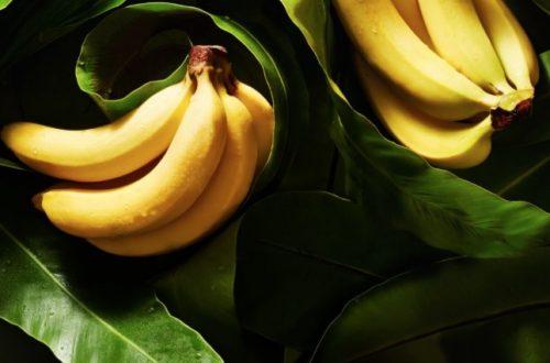 GOOD HOUSEKEEPING:  Bananas pack a triple play of healthy eating