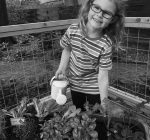 PRIME TIME WITH KIDS: Roll into spring — plant a mini garden in a wagon