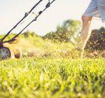 Free Illinois summer gardening webinars announced