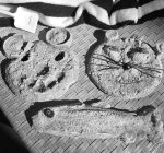 PRIME TIME WITH KIDS: Plaster-casting art at a sandy beach