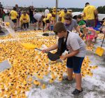East Peoria duck races raise record funds for abuse prevention, education