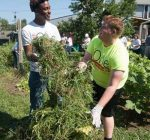 SIUE Students Learn About Community Service