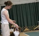 4-H goes to the dogs with annual statewide show
