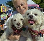 BarkaPALooza raises funds for West Suburban Humane Society