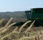 R.F.D. NEWS & VIEWS: Crops coming down across Illinois