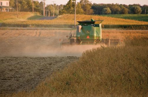 Harvests start to come in despite late start to season, recent rains