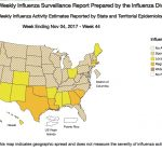Holidays mean added exposure to influenza