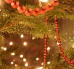 Woodford County Calendar of Events Nov. 8 – Nov. 16