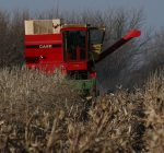 R.F.D NEWS & VIEWS: Dicamba Use and Transportation Infrastructure