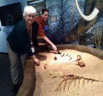New museum illuminates Lake County history
