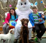 Special Easter Egg hunt offers canines a dog gone good time