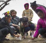 STEM Center, community expand garden program in Madison Co.