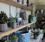 New garden boutique brings life to old downtown Aurora corner