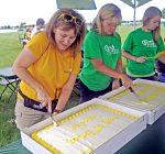Oswego's PrairieFest turns 30
