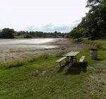 Eureka Lake drained down to diminish carp