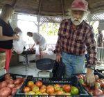 Richmond Farm hosts organic food stand, ethnic arts