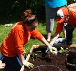 GardenWorks Project helps families gain food security