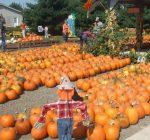 McLean County Calendar of Events Oct. 10 – Oct. 17