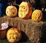 Kane County Calendar of Events Oct. 17 – Oct. 27