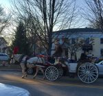 Western Suburbs are bustling with holiday happenings