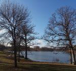 Eureka Lake is full and wildlife is back