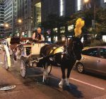 Horse-drawn carriages still trotting along in Chicago