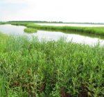 HeartLands Conservancy marks 30 years of environmental work