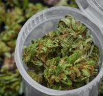 Illinois House passes marijuana legalization, bill goes to Gov. Pritzker